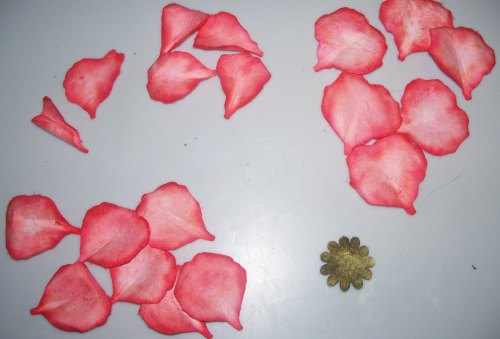 Prächtig Papierrosen mit Susan's Garden Stanzformen | Bastelfrau ® &ST_84