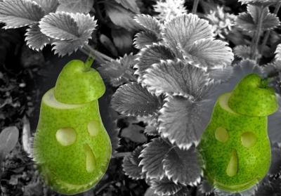 Lebensmittel Dekorieren 15 Tolle Ideen Mit Obst Bastelfrau