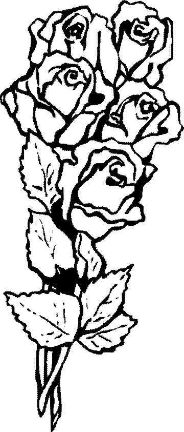Malvorlagen Blumen Teil 1 Bastelfrau