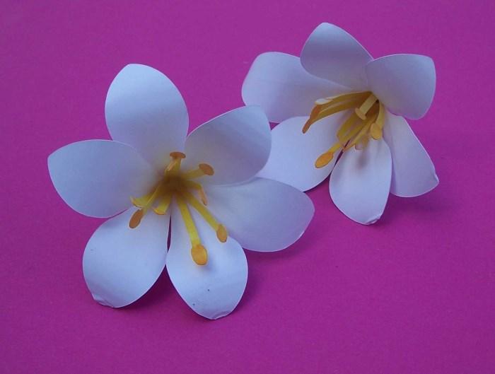 Blumen aus Papier basteln - Lilie