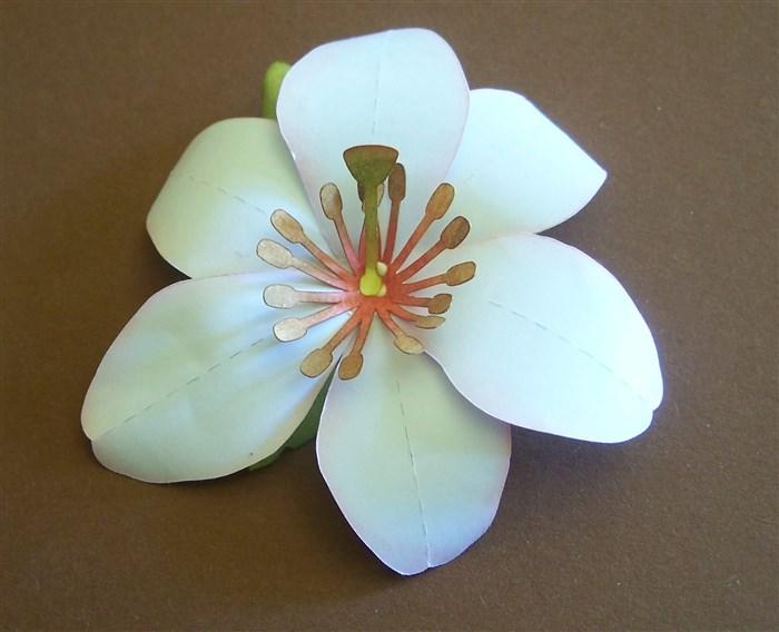 Lilie selbermachen aus Druckerpapier