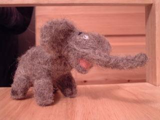 eddi-elefant1-mini.jpg