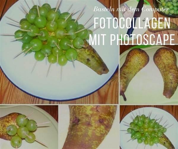 Collage mit Photoscape erstellen