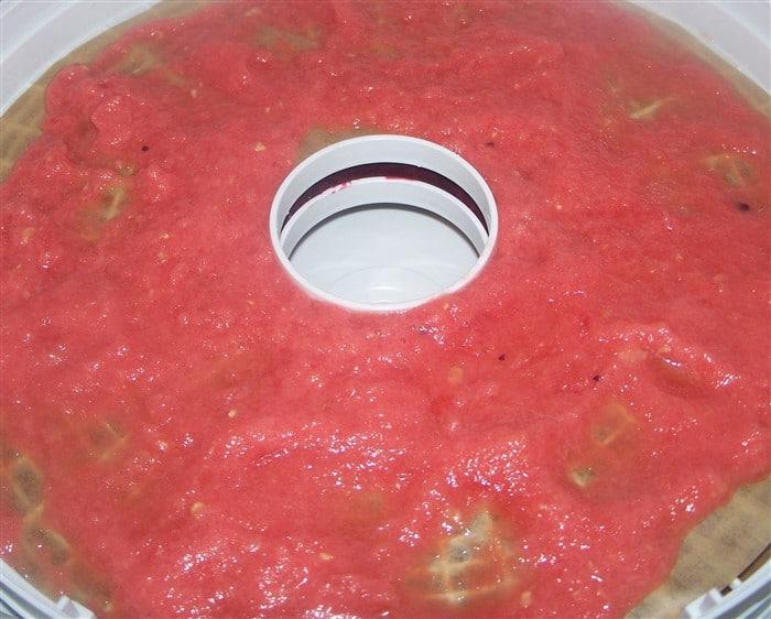 fruchtleder2b.jpg