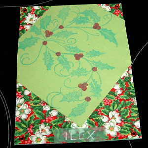 Ilex-Map