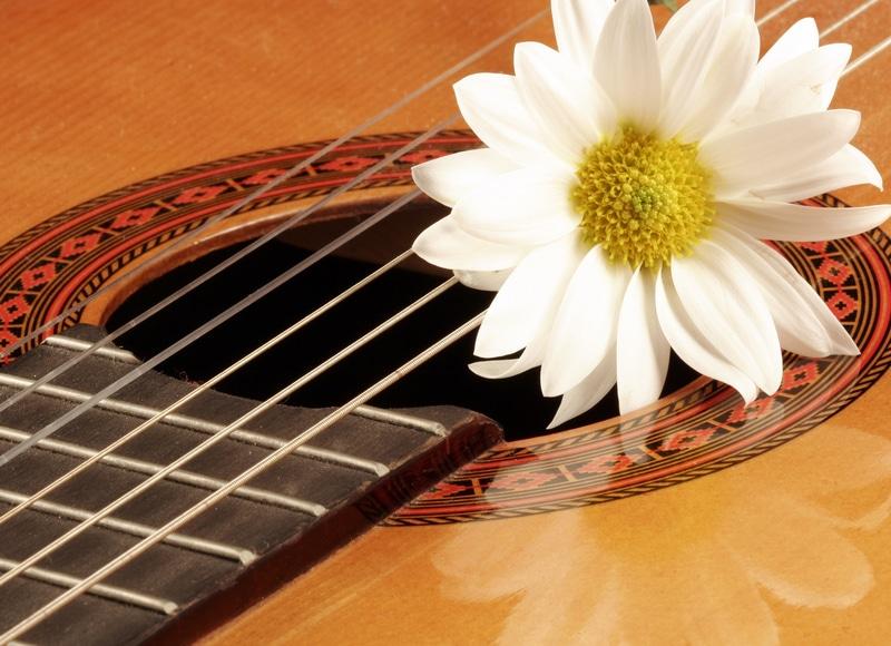 21 tolle Ideen, was man mit alten Musikinstrumenten machen kann
