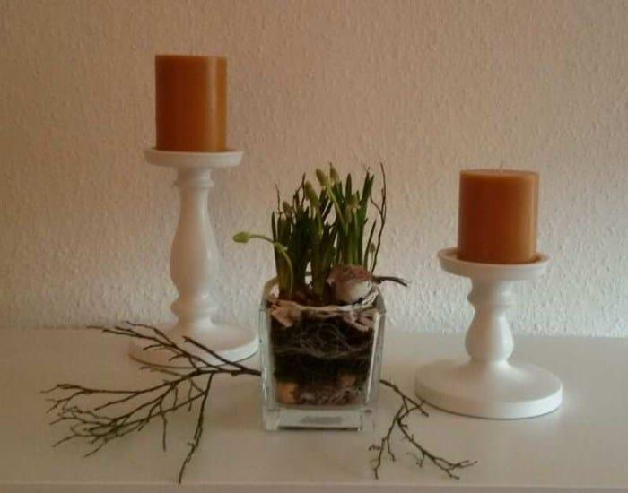 Frühling im Glas - Muscari