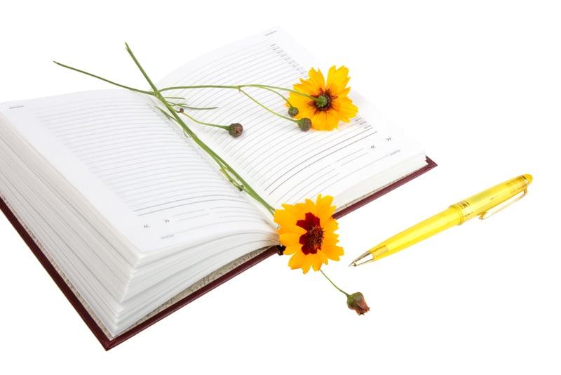 Tipps zur Planung der Fruchtfolge