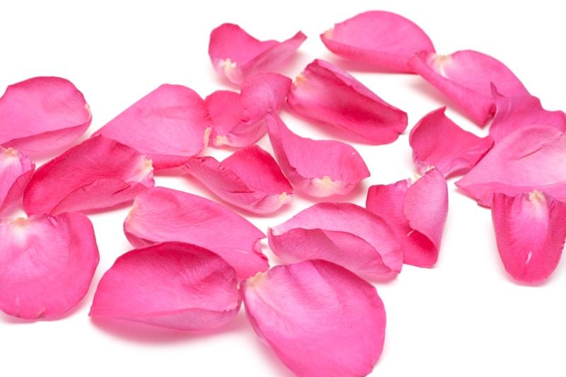 Vielseitige Rosenblüten