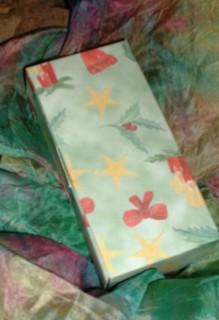 Flache Schachtel mit Bastelvorlage