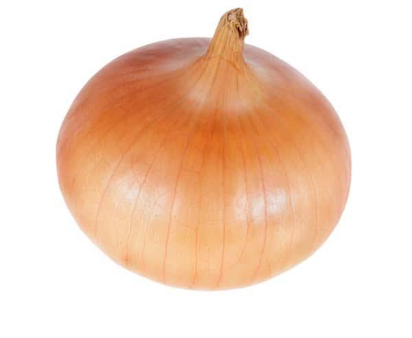 Zwiebeln – Küchentipps und Wissenswertes