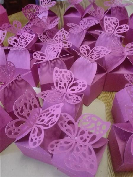 Schmetterlingsboxen