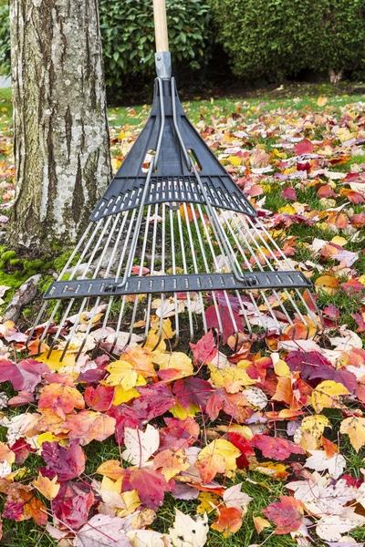 Gartenarbeiten im November
