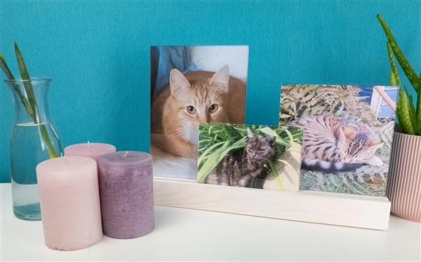 DIY Fotoboard: Mit Holzleisten und Acrylplatten ein eigenes Fotoboard basteln