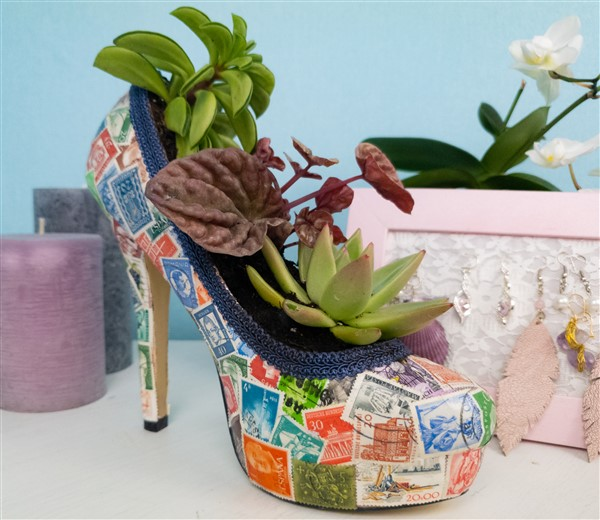 High Heels bepflanzen: Sukkulenten im Schuh selber machen